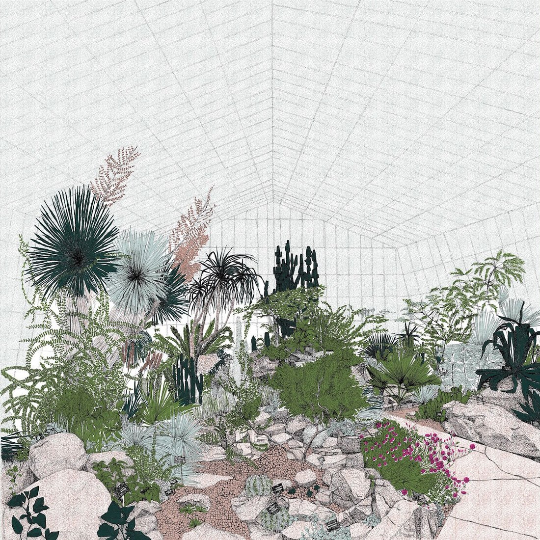Clare Halifax - Hot Mass of Cacti, 7 colour screen print. 50 x 50cm
