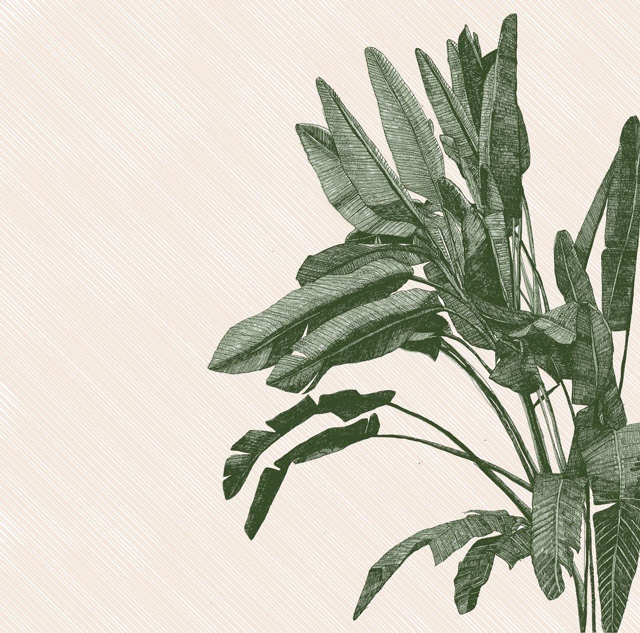 Clare Halifax, A big fan of palms. 3 colour screen print, 35x35cm