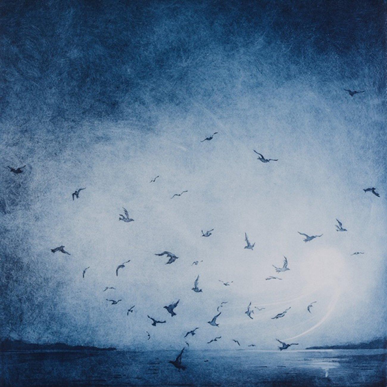 Rebecca Denton Evening Flight Blue web